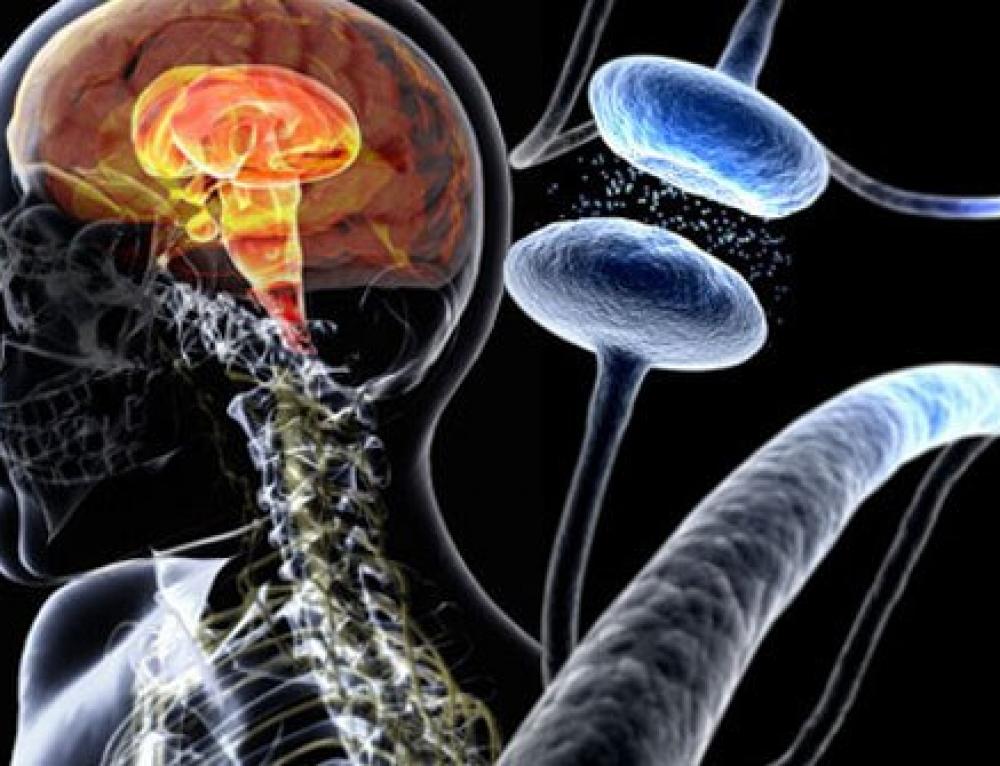 Ep. 270. Parkinson's disease